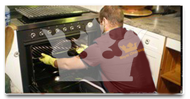 Oven cleaning Custom House E16